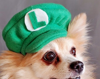 Luigi costume hat green  color  for dog or cat  Small animal Doll / Dog costume/Halloween dog and cat costume/