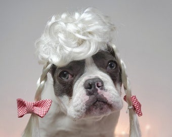 Cute pet   wig /Wig for dog or cat / Halloween dog wig / costume dog wig /Frenchies wig /