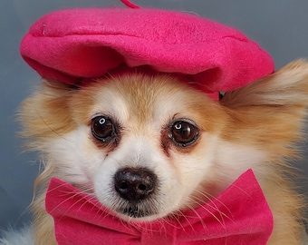 Set  2 pieces Beret  hat  hot pink  color with bow  neck tie  for dog or cat