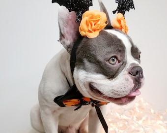 Beautiful  headband  and bow tie /Halloween costume/Dog costume /