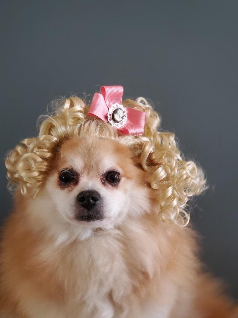 Pet  Marie Antoinette  blond color  wig for dog or cat