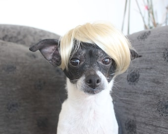 Pet  blond  wig  for dog or cat