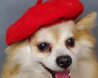 Beret  hat red color  for dog or cat  /Small animal  beret /Dog beret /