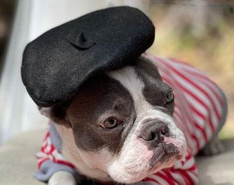 Beret  hat  black  color  for dog or cat /Hat for dogs/Beret for dogs /
