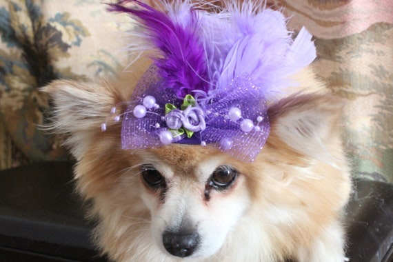 Cream  color   mini  hat with   feather and   flowers for dog or cat