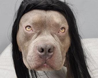 Large size black color  wig for large dog /Halloween costume dog wig/