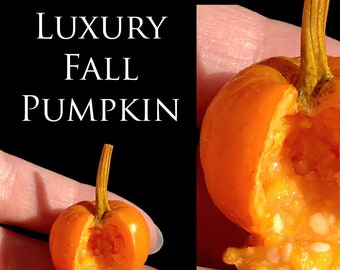 Luxury Fall Pumpkin Sliced - Halloween - Dolls house Food in 12th scale. From After Dark Miniatures.