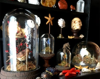 Luxury Taxidermy Curio Cabinet  - Artisan fully Handmade Miniature in 12th scale. From After Dark miniatures