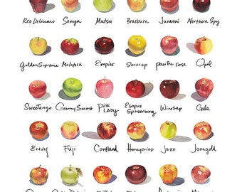 """Framed 12""""x12"""" Apple-a-Day Compilation Watercolor Print"""