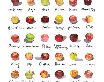 """20""""x20"""" Apple-a-Day Compilation Watercolor Print"""