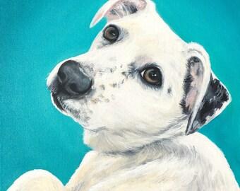 6x6 size canvas custom painted pet portrait size 6x6 canvas sample