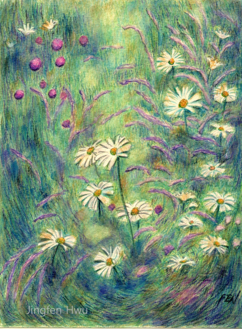 Flower drawing daisy art at flower field floral painting watercolor pencil drawing wildflower bed artwork