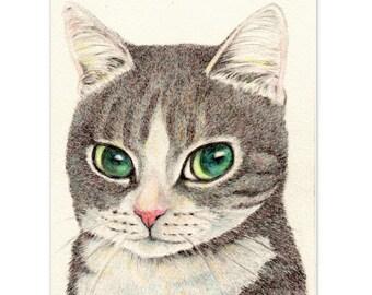 impresión del arte del gato ~ ojos de gato de mirada inteligente A Tabby ~ gato pequeño dibujo gato amante Regalo Navidad decoración casera, A3 A4 imprimir, 8 x 10, 6 x 8