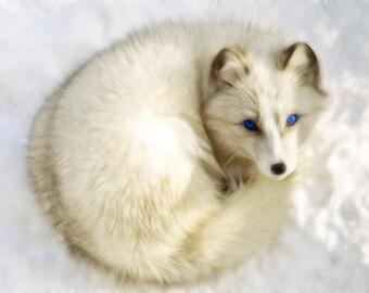 Arctic Fox Spirit Medicine Bundle - Animal Totem, Altar, Spiritual Gift, Native American Gift, Medicine Pouch, Medicine Bag, Ceremonial, Fox