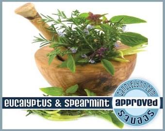 Eucalyptus & Spearmint Clam Shell - Soy Wax Tarts - Break Apart Melts