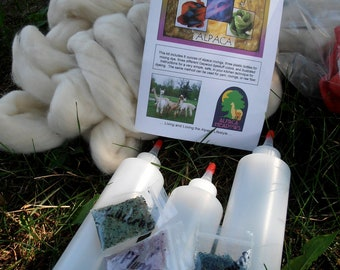 Hand Painted Roving Kit, Dye Kit, Alpaca Roving, Gaywool Dyes, Mixing Bottles, Detailed Instructions