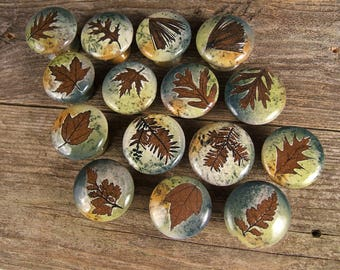 10 cabinet knobs drawer pulls Rustic Home Decor Nature ...
