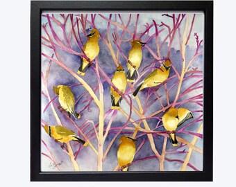 Birds art prints, Nature art prints, Song bird, Cedar Waxwings, Bird illustrations, A Bevy, A Covey, Of birds, WatercolorByMuren