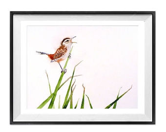 Nature Animal Wall Art Decor Wren Marsh Wren bird art prints song bird Small bird Watercolor painting Nature wildlife art print LaBerge