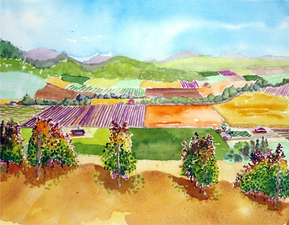 Vineyard art, California art, Scenery art print, Vineyard ...