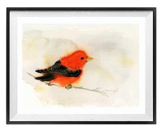 Bird Print wall art, Red and Black Bird Print, Kitchen wall art, Scarlet Tanager,  .