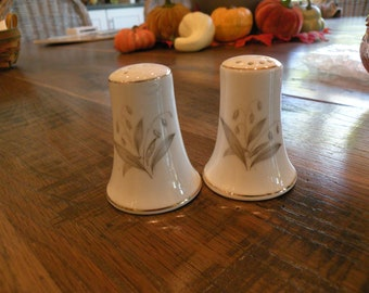 Kaysons Fine China Golden Rhapsody Salt and Pepper Shakers
