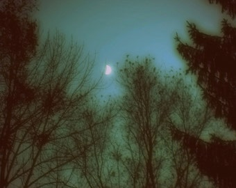 """Dreamy Nature Photography """"Mysterious Moon"""" Ethereal Night Sky Stars Photograph Print, Green Teal Blue Sky, Fairy Tale Forest"""