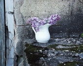 Vintage Ironstone Pitcher - English Ironstone - Collectible - Display - Flower Vase