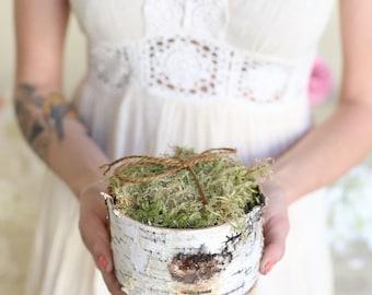 Rustic Ring Bearer Pillow Alternative Birch Moss Twine Woodland Natural Wedding (MHD120)