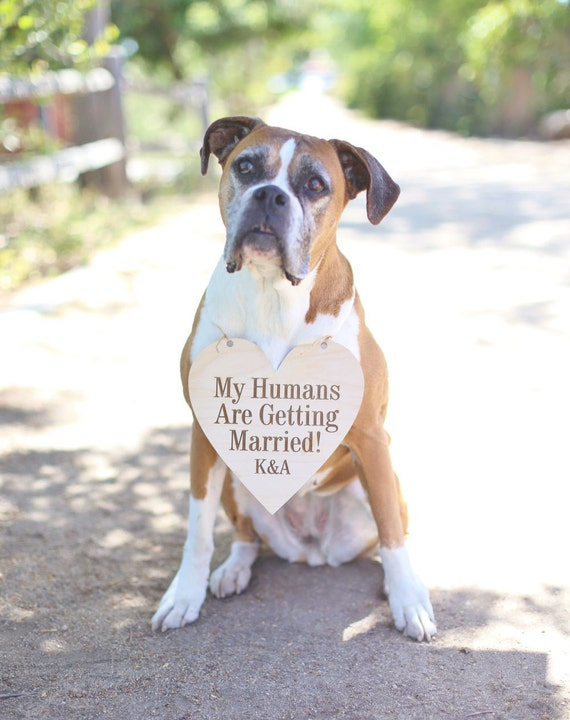Personalized Wedding Engagement Photo Prop Sign My Humans Are Getting Married Dog Ring Bearer Sign (Item Number NVMHDA1090)