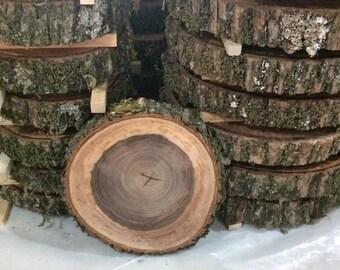 Tree Trunk Slices Etsy