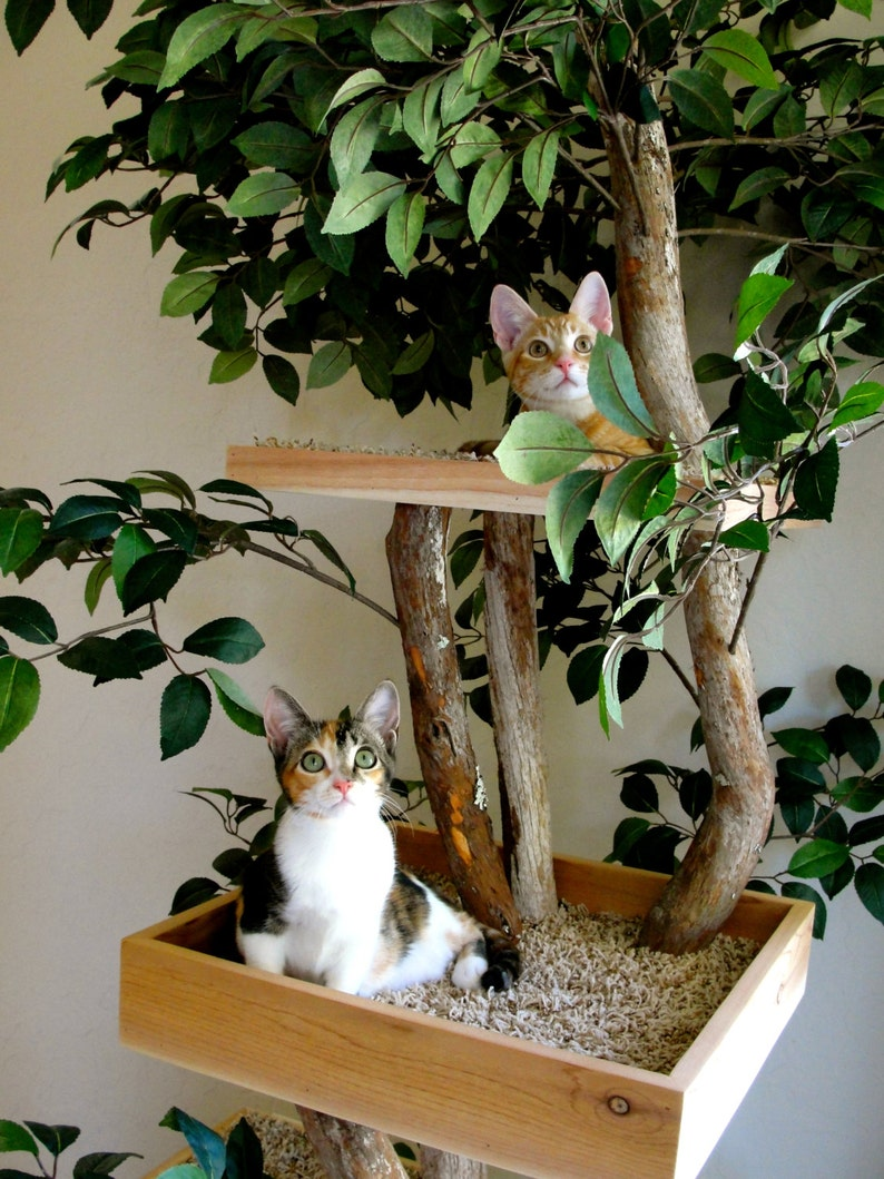 Sycamore Cat Pet Tree House image 4