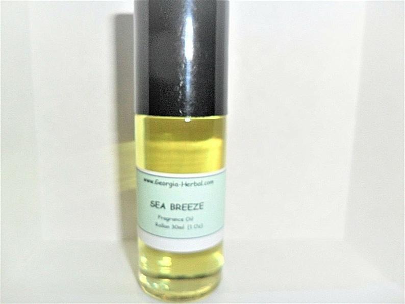 Perfume Rollon  Large 30ml  1 Oz Size   U Pick Scent   Purse image 0