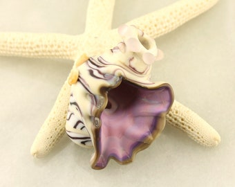 Lampwork Beads, Glass Seashell Bead   Focal Shell, Ivory, Purple,  Matte Etched