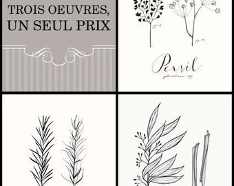 Trois HERBES Collection -Art Culinaire-
