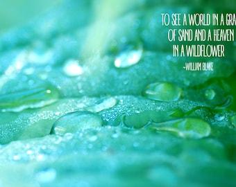 Motivational Quote Art Digital Download Photograph Etsy