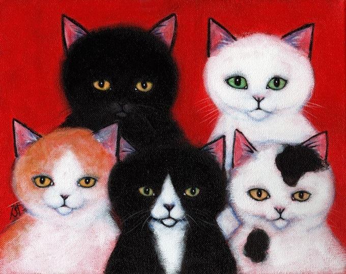 5 Fuzzy Cats.  8 x 10 print