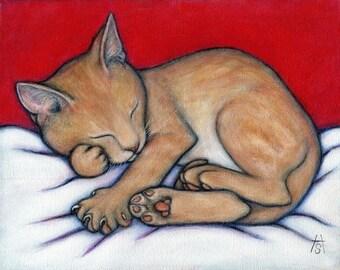 Tabby Cat art print. Willy Kitten