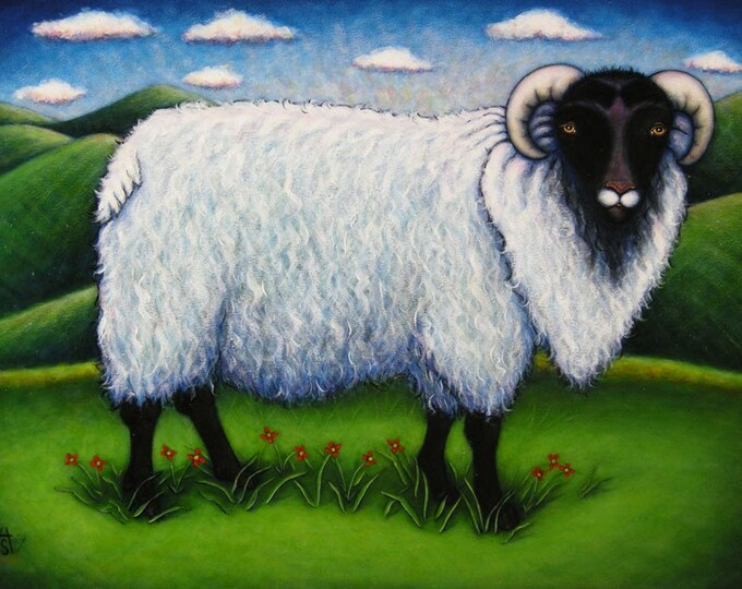 The Sheep Next Door.  8 x 10 print