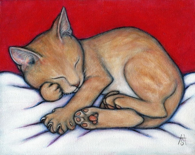 Willy Kitten.  8 x 10 print