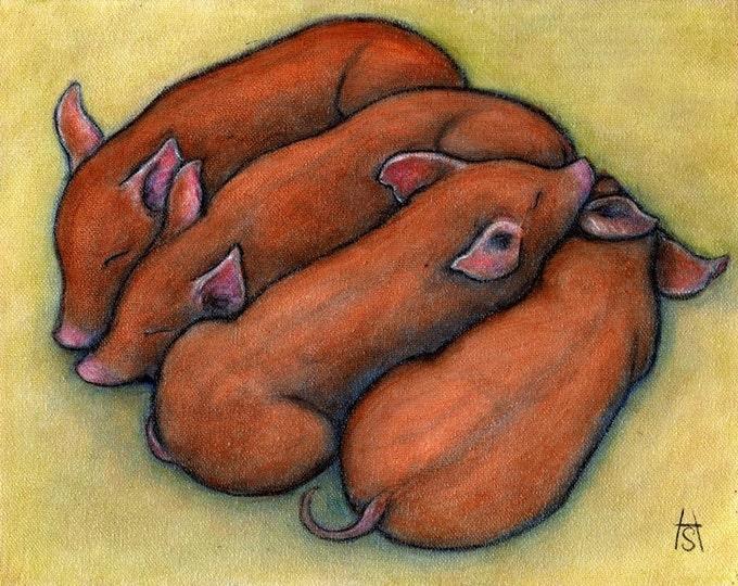 Piglets.  8 x 10 print