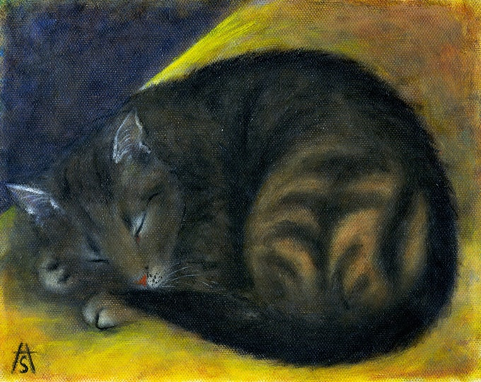 Brown Tabby Cat original Heidi Shaulis oil painting
