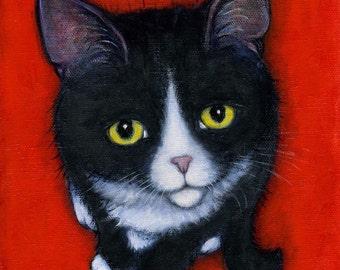 Harry Kitten.  8 x 10 print