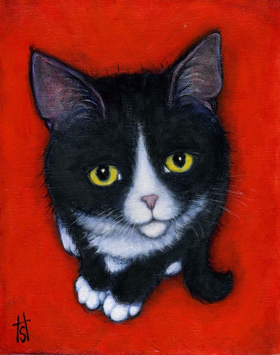 Harry Kitten.  8 x 10 print
