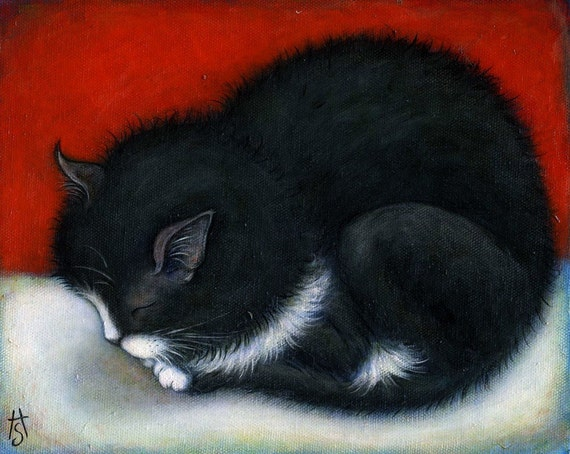 Tuxedo Kitten.  8 x 10 print