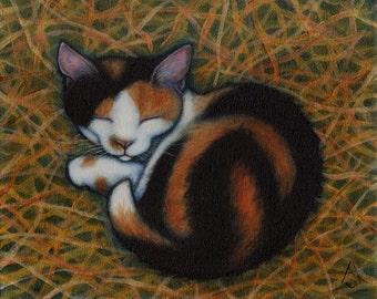 Calico Barn Cat 8x10 art print