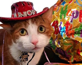 Cat Birthday Hat for cat - Personalized Cowboy hat for cats and dogs