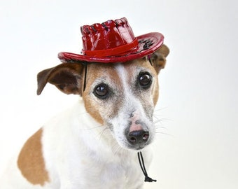 "Dog Cowboy hat for small cats and dogs 10-12"" collar size (plain - no letters)"