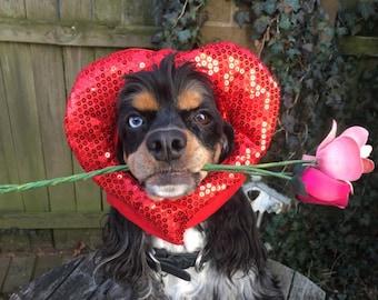 Valentines Day dog cat hat
