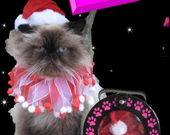 Santa Hat for cats and Candy Cane Party Collar